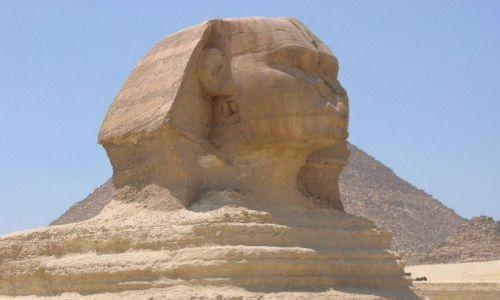 Zdjecie EGIPT / brak / Giza / Sfinks