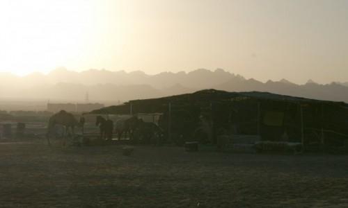 Zdjecie EGIPT / wybrzeże morza Czerwonego / Hurghada / plaża o zachodz