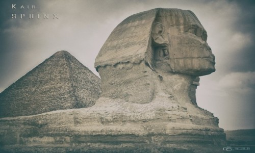 Zdjecie EGIPT / Kair / Giza / Spinx