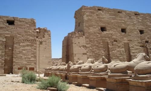 Zdjęcie EGIPT / Luksor / Karnak / Egipskie wspomnienia