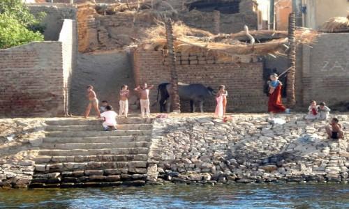 Zdjęcie EGIPT / Dolina Nilu / Gdzieś nad Nilem... / Egipskie wspomnienia