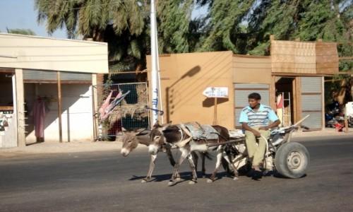Zdjęcie EGIPT / Luksor / gdzieś w okolicach Luksoru / Egipskie wspomnienia