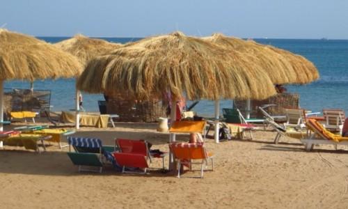 Zdjecie EGIPT / Pustynia Arabska / Safaga / wspomnienie lata