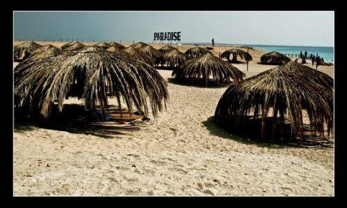 Zdjecie EGIPT / brak / Giftun / Paradise