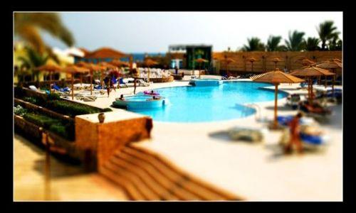 Zdjecie EGIPT / brak / Hurghada / Palm Beach - Shift Tilt II