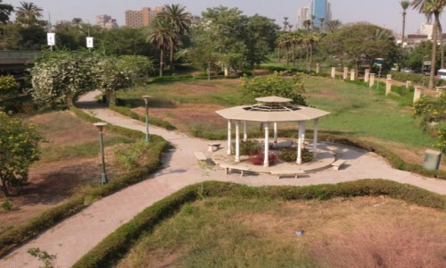 Zdjęcie EGIPT / Kair / Zamalek / Ogród botaniczny