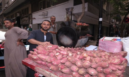 Zdjęcie EGIPT / Kair / Zamalek / Bataty