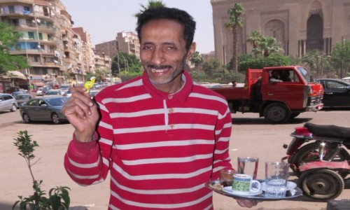 Zdjęcie EGIPT / Egipt / Kair / kelner