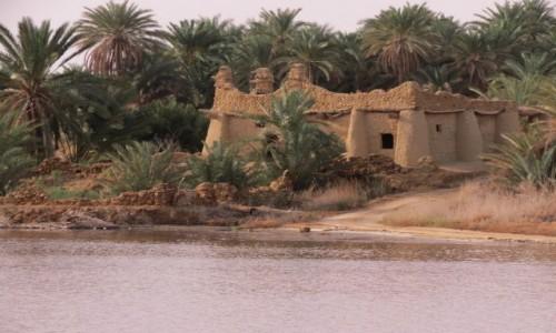 Zdjecie EGIPT / Afryka / Kair / siwa dom nad jez