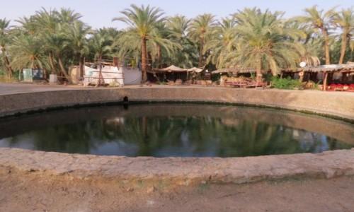 Zdjecie EGIPT / Afryka / Kair / siwa źródło kleopatry