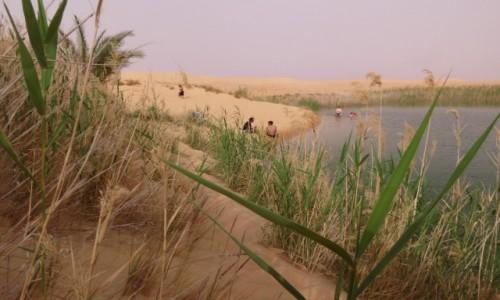 Zdjecie EGIPT / Afryka /  Siwa / siwa oaza jezioro