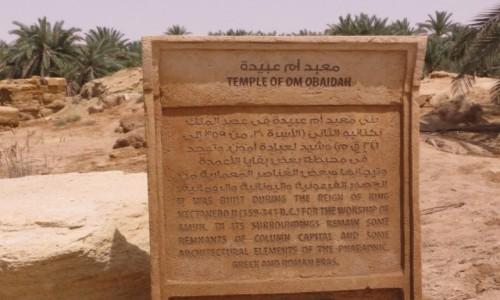 Zdjecie EGIPT / Afryka /  Siwa / siwa wyrocznia