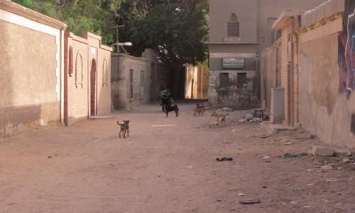 Zdjecie EGIPT / Afryka / Kair / m umarłych ulica