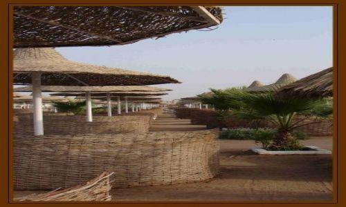 Zdjęcie EGIPT / Egipt - Hurgarda / Hotel Alladyn / plaża