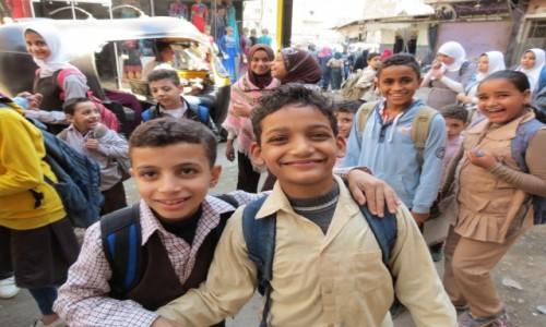 Zdjecie EGIPT / Afryka / Kair / Kebda Camel 10