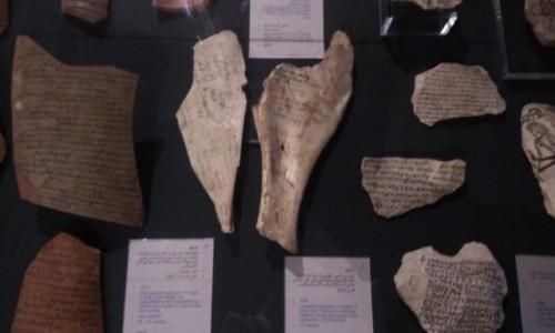 Zdjecie EGIPT / Afryka / Kair / Babilon8