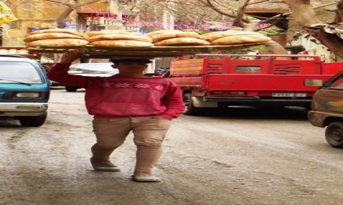 Zdjecie EGIPT / Kair / Kair - dzielnica muzułmańska / dostawca pieczywa