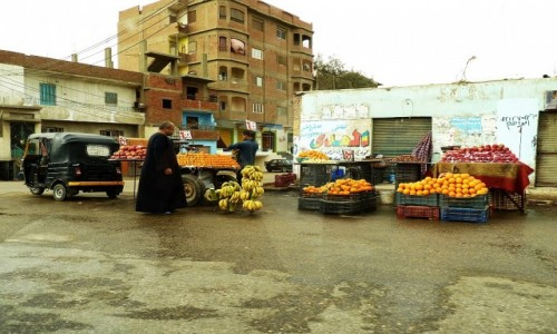 Zdjecie EGIPT / okolice Kairu / współczesne Memfis / osiedlowy stragan
