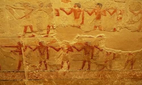 Zdjecie EGIPT / Nekropolia Memficka / Sakkara / grobowiec księżniczki Idut