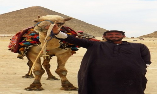 Zdjęcie EGIPT / Nekropolia Memficka / Giza / propozycja przejażdżki
