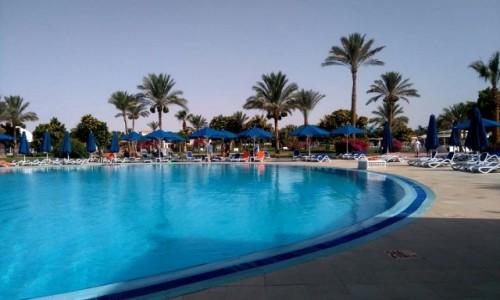 Zdjecie EGIPT / Muhafaza_Prowincja Morza Czerwonego / Hurghada / Przy basenie