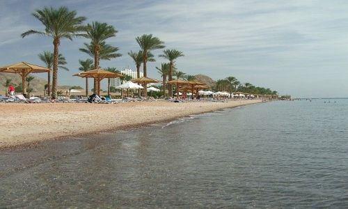 Zdjecie EGIPT / Półwysep Synaj / Taba, Zatoka Akaba, M.Czerwone / Plaża