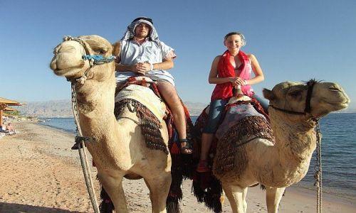 Zdjecie EGIPT / Półwysep Synaj / Taba / Turyści na wielbłądzie