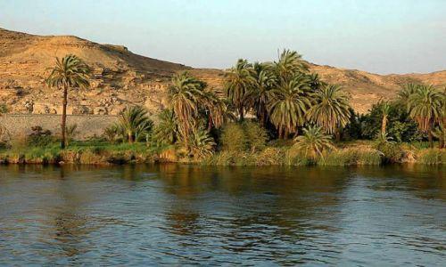 Zdjecie EGIPT / blisko Asuanu / Nil / rejs Nilem popołudniowe widoki