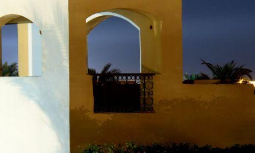Zdjecie EGIPT / brak / Sharm / ..
