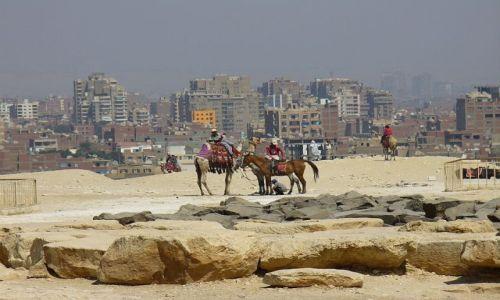 Zdjecie EGIPT / brak / Giza / tyłem do piramidy
