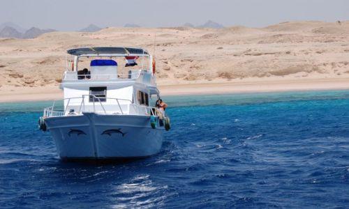 Zdjecie EGIPT / Egipt / Red Sea / Rejs