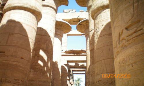 Zdjecie EGIPT / brak / Luksor / Sw w  Karnak