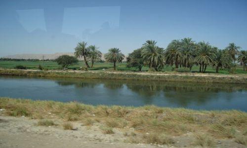 Zdjecie EGIPT / brak / EGIPT / Kanały nad  Nilem