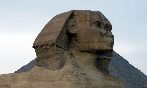 Zdjecie EGIPT / Afryka / Kair/Giza / Sfinks