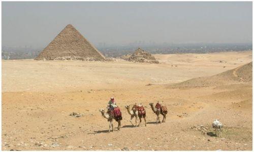 Zdjęcie EGIPT / Egipt północny / Giza,Kair /