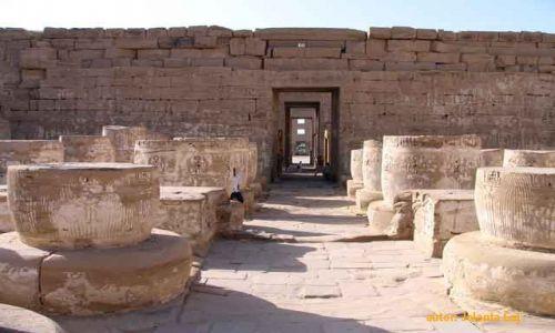 Zdjęcie EGIPT / Luksor / Luksor / Madinat Habu