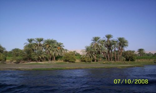 Zdjecie EGIPT / Egipt / Nil / krajobraz Nilu /Tak to pażdziernik!Spoko..jeszcze się nauczę usuwać datę.Dzięki za oceny