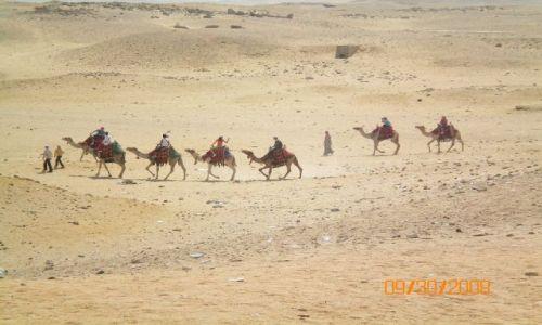 Zdjecie EGIPT / Hurghada / Gdzieś na pustyni / Karawana