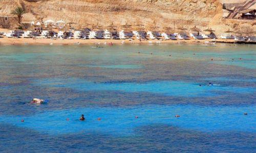 Zdjecie EGIPT / brak / Egipt- mój dom :) / Ja już chcę tam wrócić, ja chcę rafy:)