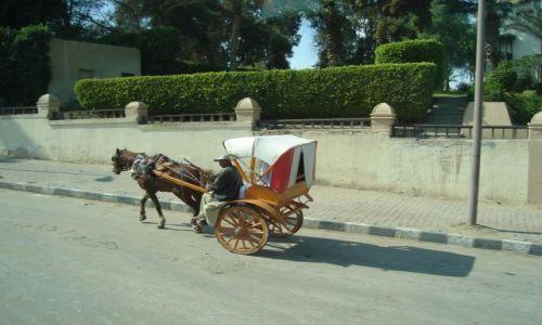 Zdjecie EGIPT / Kair / Ulica Kairska / Transport