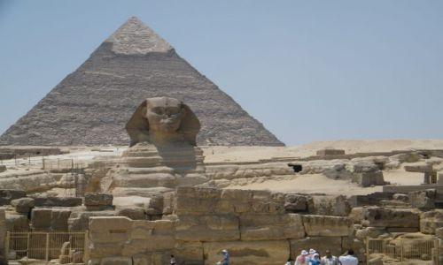 Zdjecie EGIPT / Giza / Giza / Sfinks