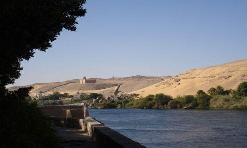 Zdjęcie EGIPT / nil / brak / egzotyka
