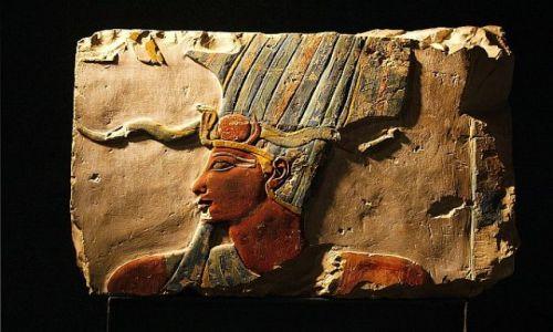 Zdjecie EGIPT / Luxor / muzeum / Luxor