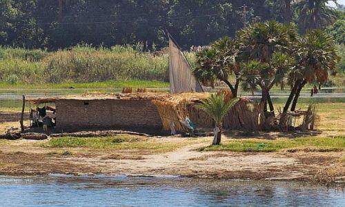 Zdjęcie EGIPT / gdzies / Nil / chata
