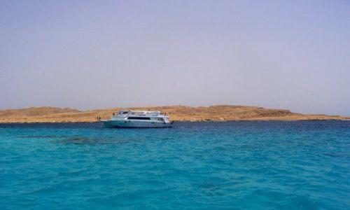 Zdjecie EGIPT / niedaleko Hurghady / okolice Hurghady / rejs na nurkowanie