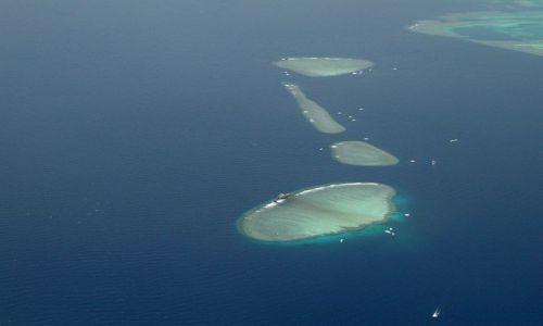 Zdjecie EGIPT / Sharm el - Sheikh / Sharm el - Sheikh / nurkowanie na rafach