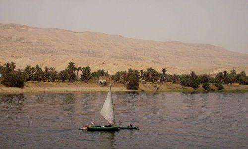 Zdjecie EGIPT / rejs po Nilu / w drodze do Abu Simbel / feluka na nilu