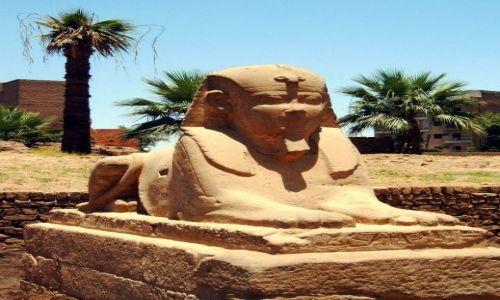 Zdjęcie EGIPT / Luxor / Luxor / Luxor