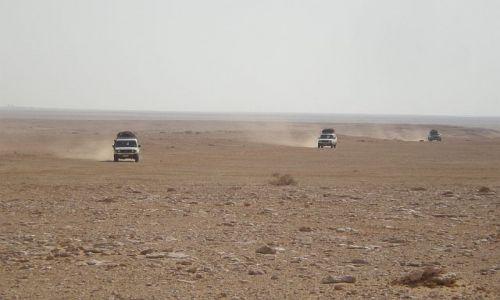 Zdjecie EGIPT / Pustynia El Alamain / El Alamain / Podróż śladami II wojny światowej