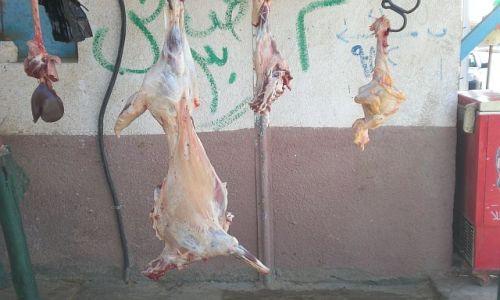 Zdjecie EGIPT / Pólnocny Egipt / - / Sklep mięsny